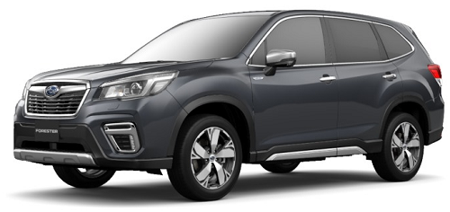 FORESTER Advance